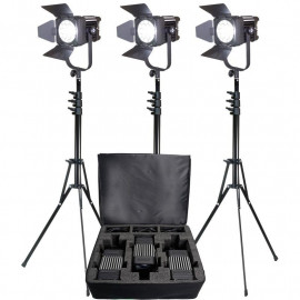 LEDGO - KIT Projecteur Fresnel 60W 5600K