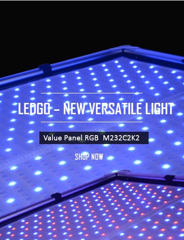 LEDGO RGB NEW VERSATILE by Ledgo